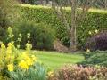Landscaping - 005.jpg