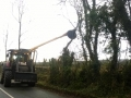 Hedge Cutting and Tree Care 04.jpg