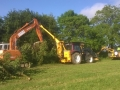 Hedge Cutting and Tree Care 18_home page.jpg