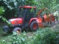 Hedge Cutting and Tree Care Slide 3.jpg