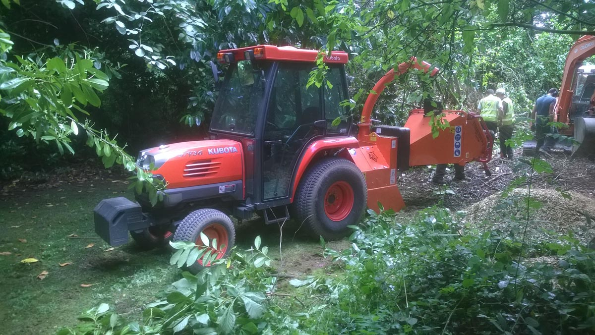 Hedge-Cutting-and-Tree-Care-Slide-3